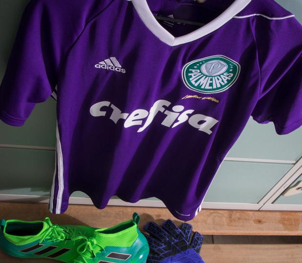 3d14c5eeb661f Nova camisa de goleiro do Palmeiras