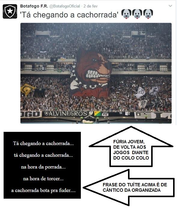 Tuitada do perfil do Botafogo quando da volta da Fúria Jovem aos jogos, diante do Colo Colo