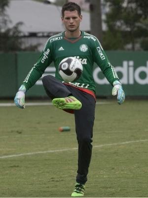 Vagner está no Palmeiras desde janeiro de 2016