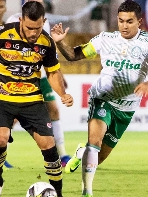 Dudu Palmeiras Novorizontino Campeonato Paulista 02/04/2017