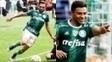 Os dois não ficarão no Palmeiras para 2017