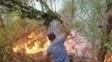 Chile Incendio Florestal 28/01/2017