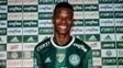 Tchê Tchê foi apresentado como novo reforço do Palmeiras