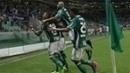 Jogadores do Palmeiras comemoram um dos gols da vitória sobre o Mirassol