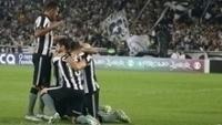 Botafogo encara o Avaí nesta segunda-feira