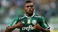Palmeiras Ferroviária Borja festa Paulista 2017
