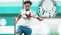 Palmeiras pega a Ponte Preta nesta quarta-feira