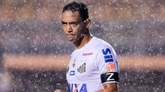 Ricardo Oliveira, Santos, Libertadores