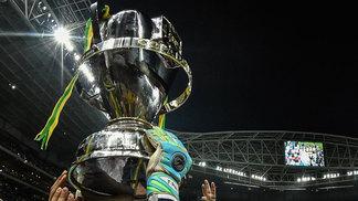 Copa do Brasil Troféu Palmeiras 02 12 2015 e82e0bb92b17a
