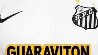 guaraviton santos patrocinio brasileiro 2015 reproducao