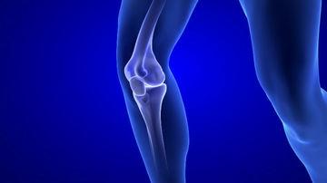 Colágeno tipo 2 pode prevenir lesão na cartilagem