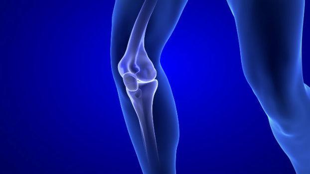 cronograma de recuperação da lesão do nervo femoral