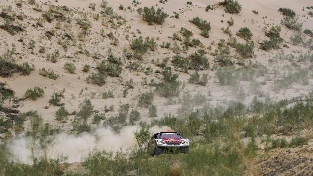 Cyril Despres / David Castera (Peugeot 3008DKR)