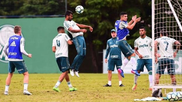 Palmeiras Tour tem pacotes para jogo contra o Inter no Beira-Rio