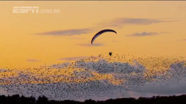 Na Dinamarca, campeão mundial de paraglider realiza sonho de voar perto de estorninhos