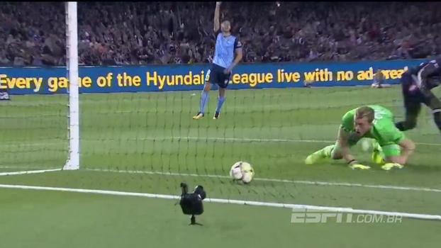 Zagueirão se desentende com as próprias pernas e faz gol contra patético na Austrália
