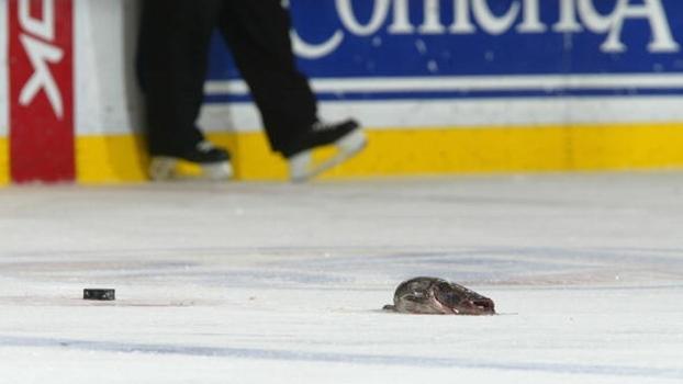 Torcedor arremessa bagre no gelo durante final da NHL; assista