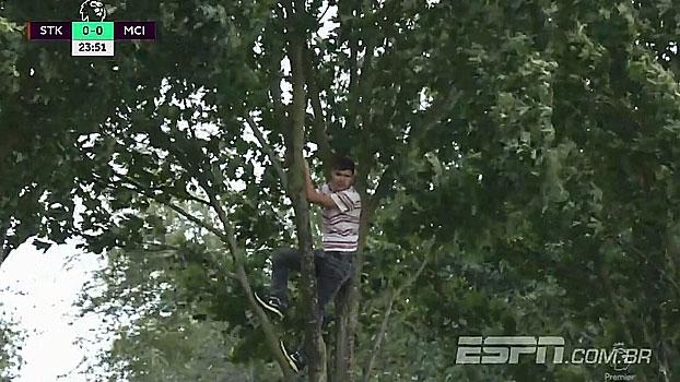 Acabou o ingresso? Em Stoke, torcedor é 'pego' assistindo jogo em cima da árvore