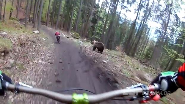 Urso invade pista de mountain bike de resort na Eslováquia e aparece em gravação