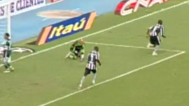 Em 2009, Botafogo bateu Palmeiras no RJ, escapou do rebaixamento e tirou rival da Libertadores