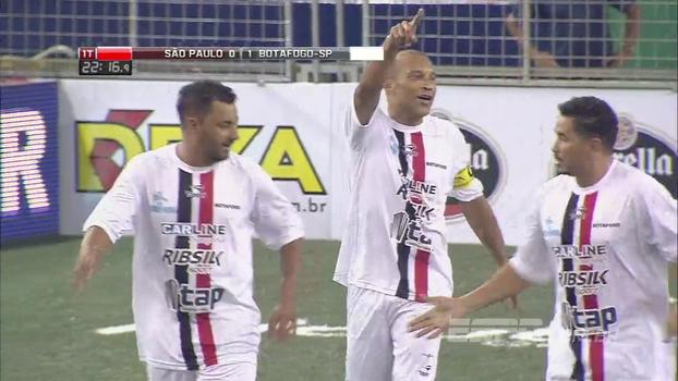 Assista aos gols da vitória do Botafogo sobre o São Paulo por 15 a 12!
