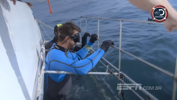 Michael Phelps mergulha com tubarões e passa apuros a centímetros de dentes bastante grandes; veja