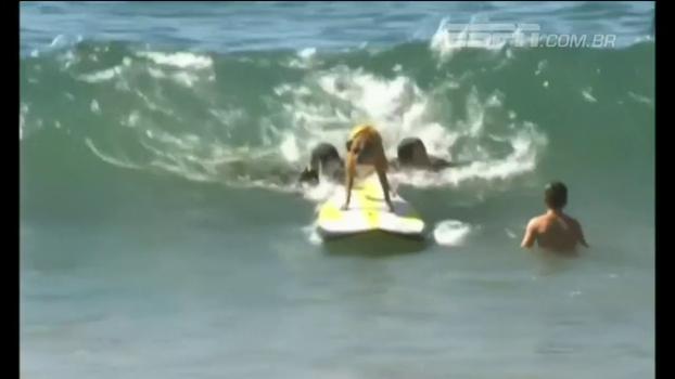 Fofura! Veja como foi o segundo campeonato mundial de surfe para cães