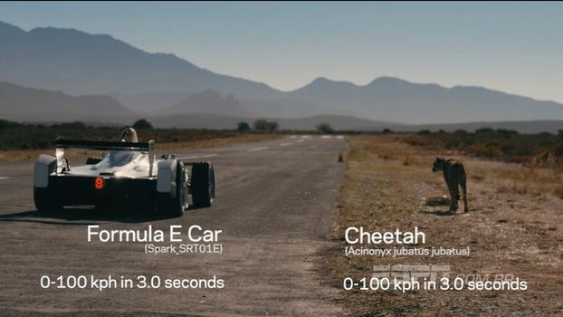 Carro de Formula E, abastecido por energia elétrica, aposta corrida com guepardo