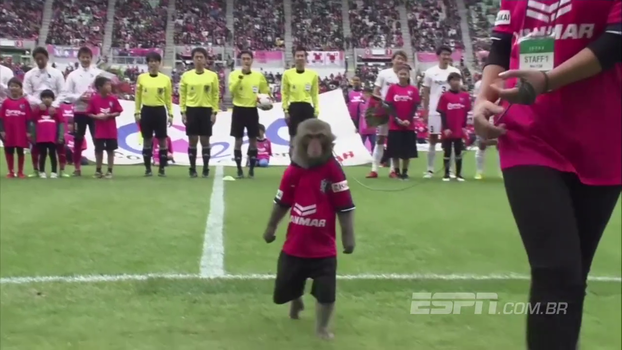 Bizarrice liberada: no Japonês, macaco uniformizado tem a honra de entregar bola ao juiz no pré-jogo