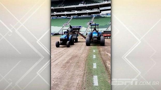Veja as imagens da troca de gramado do Allianz Parque