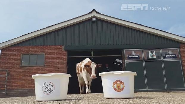Ajax ou Manchester United? Vaca vidente prevê futuro ganhador da final da Europa League