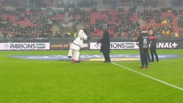 Bicampeão olímpico, Teddy Riner aplica 'ippon' em mascote do Rennes
