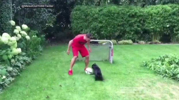 Ozil mostra habilidade ao brincar de futebol com seu cachorro; assista